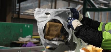 Des cadavres de chiens jetés avec les ordures à Sarreguemines