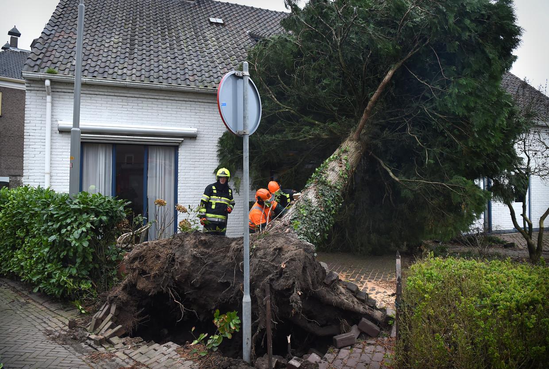 Nederlands Eerste Storm Met Een Naam Komt Eraan En We Noemen Haar
