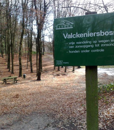 Dit is waarom de gemeente Renkum bomen in twee bossen weghaalt