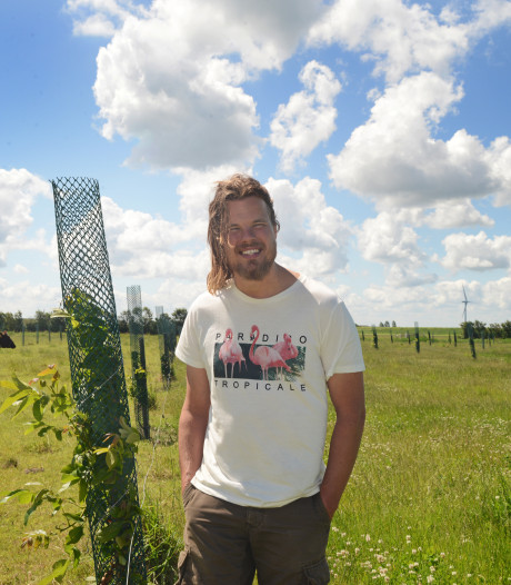 Boer Charl pioniert: de koeien betalen de walnoten