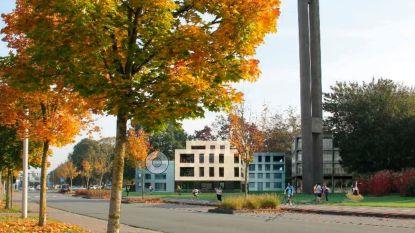 N-VA Deinze organiseert bevraging omtrent Oostkouterwijk
