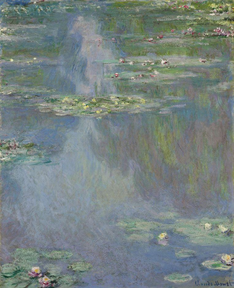 Monet: Waterlelies Beeld ap