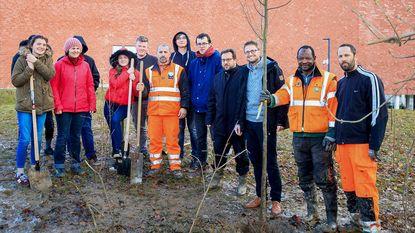Leerlingen GITO planten 700 bomen rondom school