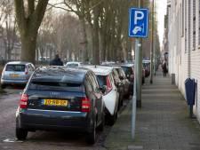 Parkeeropbrengsten Den Bosch vallen vies tegen