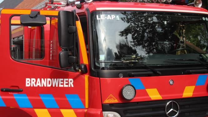 Wespennest onder dak schiet in brand