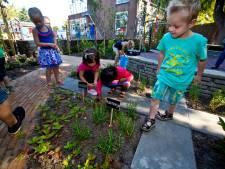Schoolpleinen Heusden moeten  'groener'