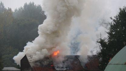 Bewoner weigert pand te verlaten bij zware brand: één agent lichtgewond, tweede krijgt pot verf over zich heen