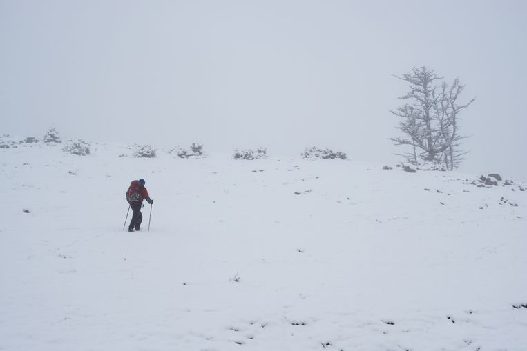Wie sneeuw wilde zien, moest naar de gletsjers, maar daar komt dit weekend verandering in. Bijna overal in de Alpen gaat het stevig sneeuwen.