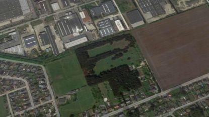 Oudsbergen koopt grond van 5,6 hectare voor uitbreiding industrieterrein
