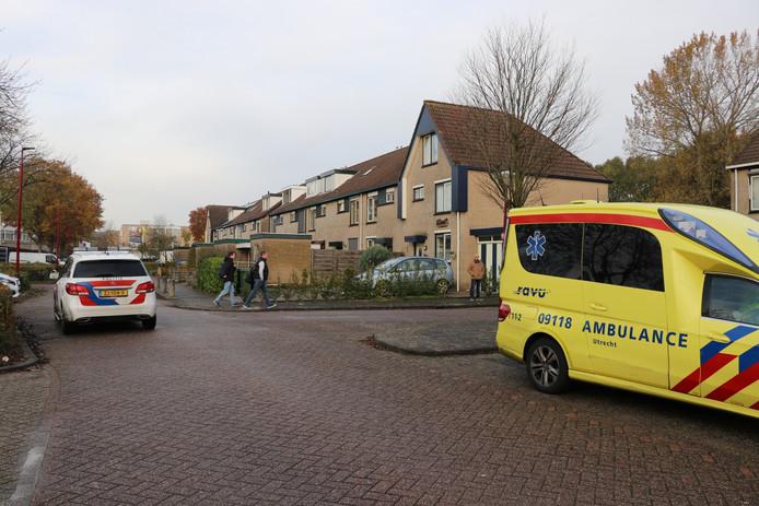 De Harmonielaan in Nieuwegein.