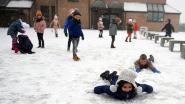 Sneeuwval: idyllische taferelen en dolle pret