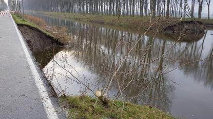 Molshopen wellicht oorzaak van dijkbreuk in Damme