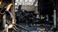 Inferno in dierentuin: Duitsers rouwen om 30-tal apen