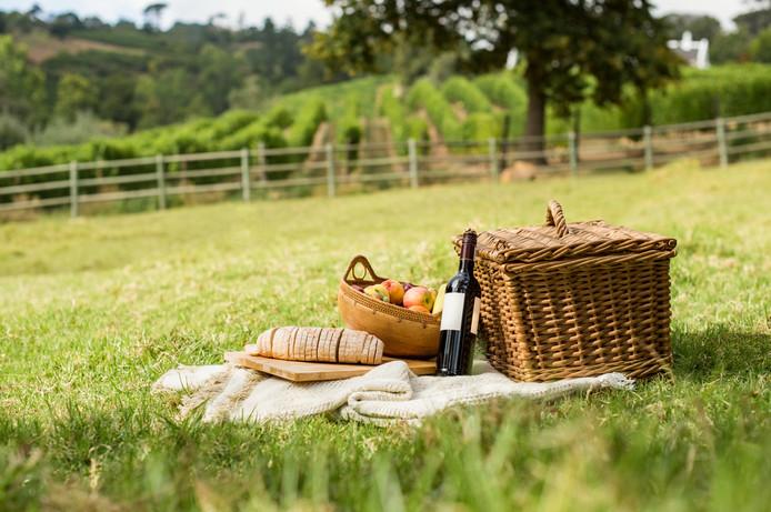 Het is de komende dagen heerlijk weer om te picknicken
