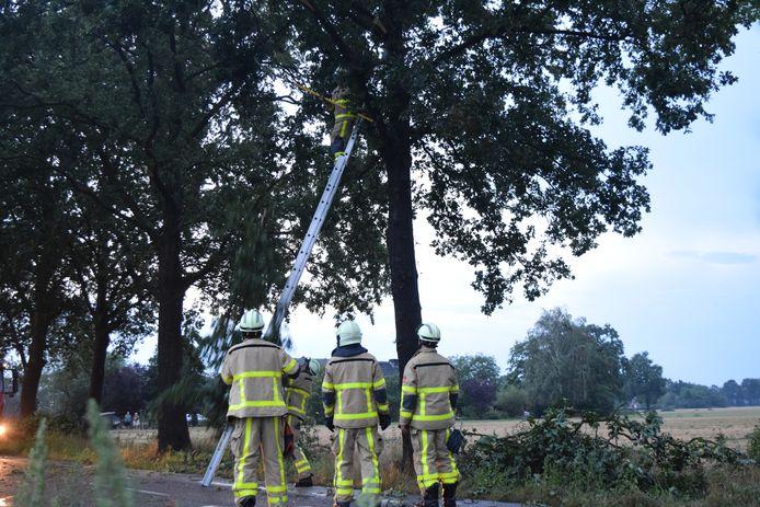 De brandweer aan het werk aan de Keppelsbroekdijk bij Westendorp in de Achterhoek.