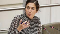 """Vlaamse regering vindt geen akkoord over Klimaatplan, Demir gaat zonder plan """"niet naar Madrid"""""""
