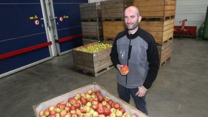 Succes met een keerzijde: Meer appels, lagere prijzen