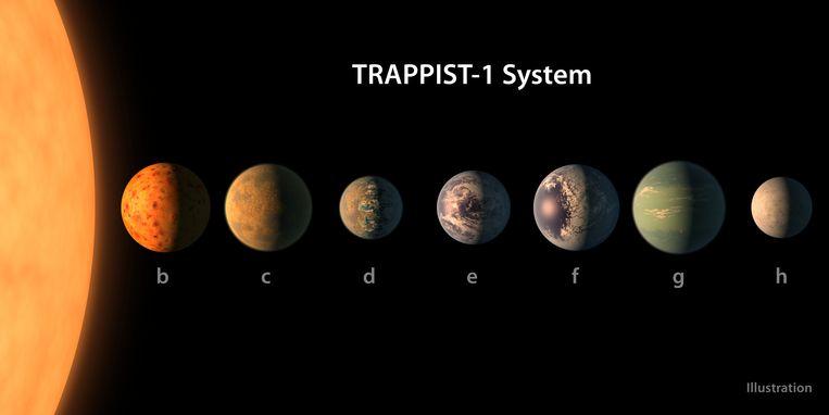De planeten Trappist-1 e, f en g, omcirkelen in de levensvatbare zone hun ster, wat betekent dat er vloeibaar water op hun oppervlak zou zijn.
