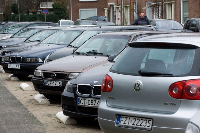 Rijen geparkeerde Poolse auto's in Tiel. Ook in Neder-Betuwe verblijven veel Polen