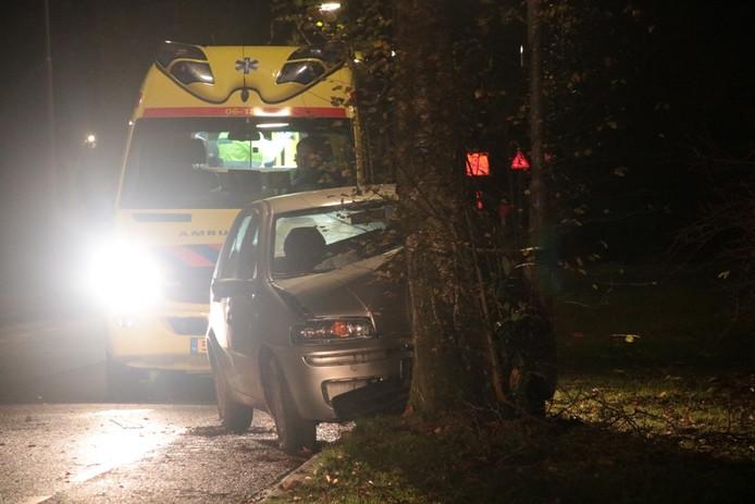 De automobiliste is over de weg geschoten en tegen een boom aan de andere zijde tot stilstand gekomen. Foto: AS Media