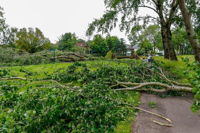 Het zware noodweer leidde deze week tot veel omgewaaide bomen en afgebroken takken.