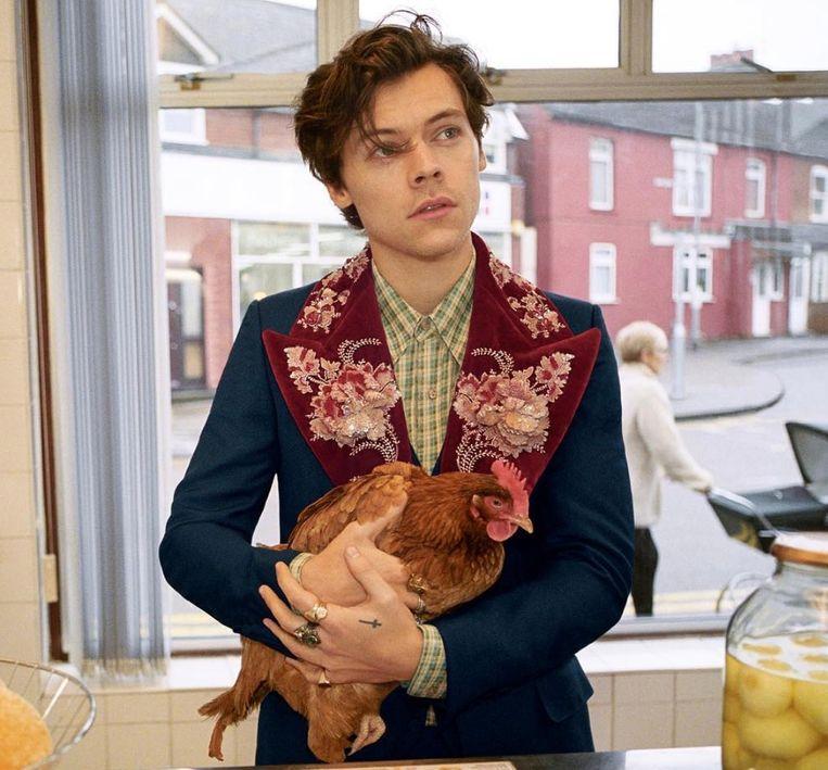 22b85dcf657 Harry Styles maakt er een bonte beestenboel van voor Gucci.