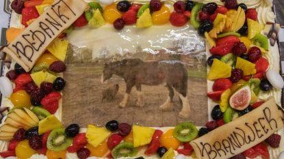 Eigenaar beloont brandweer met gebak voor het redden van zijn paard