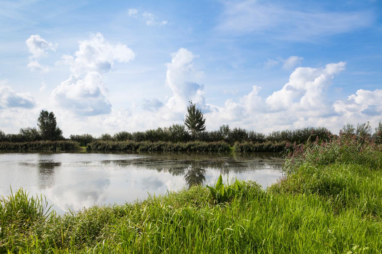 Binnenveldse Hooilanden is een natuurgebied waar Mooi Wageningen samen met Staatsbosbeheer en de Agrarische Natuurvereniging Binnenveld een natuurontwikkelingsplan doorvoeren.