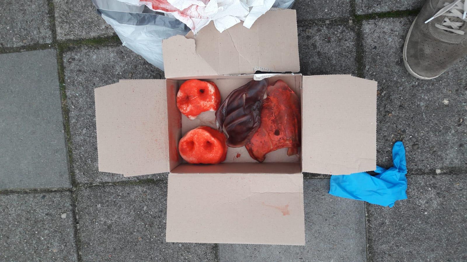 Het pakketje met daarin met bloed besmeurde delen van een varken.
