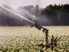 Waterschap De Dommel: Onttrekkingsverbod oppervlaktewater voor vier beken opgeheven