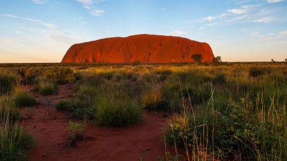 """Chaos door stormloop toeristen bij Australische trekpleister: """"Het is nogal hectisch"""""""