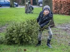 Hoe kom jij van je boom af?