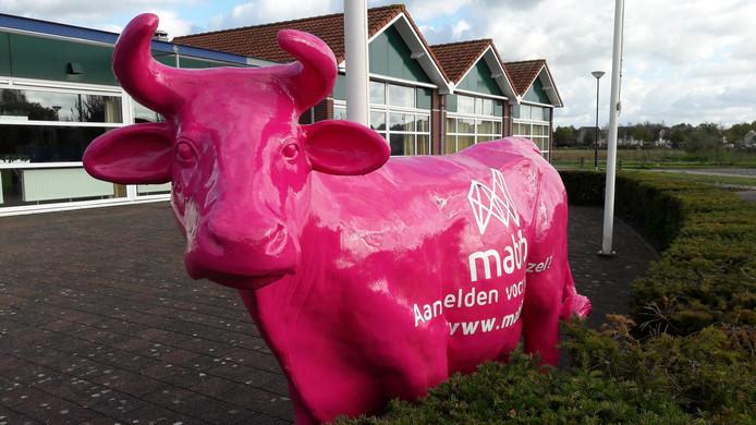 Mabib, sinds november 2018 Glasvezel Buitenaf, maakte twee jaar terug in het Land van Heusden en Altena reclame voor breedband met roze koeien.
