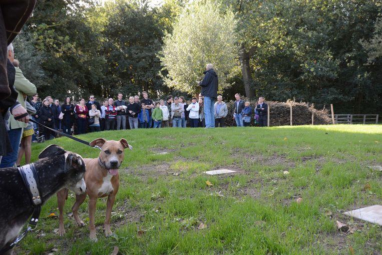 het reglement voor de pas geopende dierenbegraafplaats doet stof opwaaien.