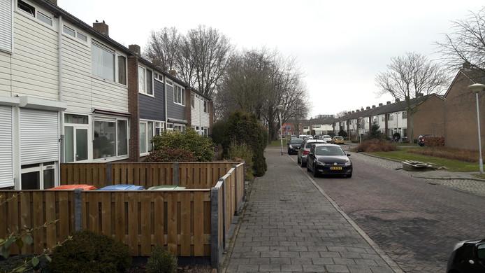 In Jan David Zocherstraat in Geeren-Zuid in Breda hebben drie maanden camera's gehangen naar aanleiding van een liquidatiepoging en een autobrand.