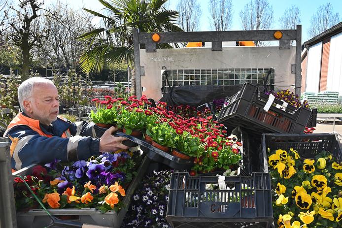 Kwekerij de Maasdijk gaat de planten die ze normaliter verkopen nu planten bij de zorgcentra in de omgeving.