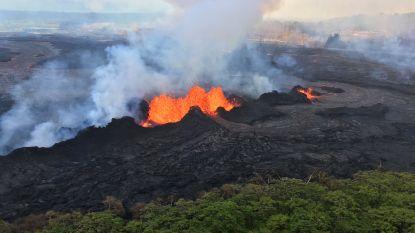 Lava vernielt prachtige natuurgebieden met uitzonderlijk leven op Hawaï (maar wetenschappers maken zich geen zorgen)