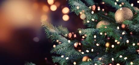 Twaalf kerstbomen gestolen in Emmerik