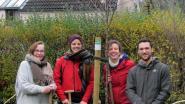 Groen Oud-Heverlee plant verkiezingsbos