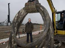 Damcon begonnen met bouw bij laanboomteelt in Opheusden