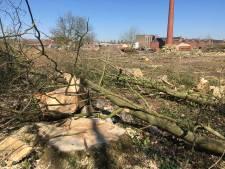 Bomenkap op Van Besouw-terrein in Goirle schokt: 'Het is een slagveld'