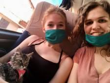 Illegaal ingevoerde kat Lee uit Peru mag van rechter geen spuitje krijgen