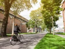 Tweeduizend handtekeningen tegen biomassacentrale in Arnhem