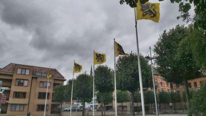 """PVDA ziet Vlaamse vlag liever halfstok: """"Met eerbied voor coronaslachtoffers"""""""