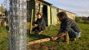 'Letsgroep' Vrouw Holle telt 120 gezinnen