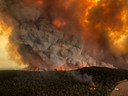 Bosbranden in de buurt van Bairnsdale.