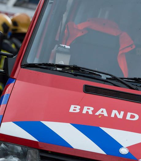 Plantenbak in de fik: twee brandweerwagens rukken uit