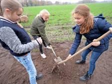 Actie 'Boom zoekt schoolplein' in Terneuzen, Hulst en Sluis