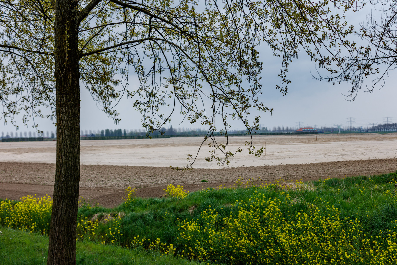 Het Havenbedrijf Moerdijk bracht eerder een gigantische hoeveelheid grond naar het toekomstige terrein van het Logistiek Park Moerdijk. Maar het LPM zelf wil maar niet van de grond komen.