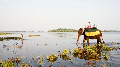 Dit zijn de 10 meest wrede toeristische attracties ter wereld